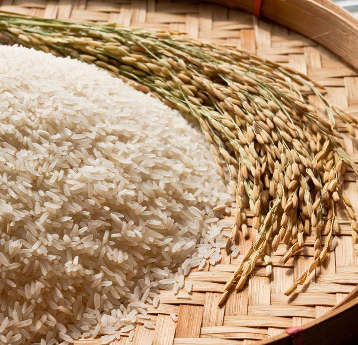 Arroz e Feijão: abastecimento garantido em 2021